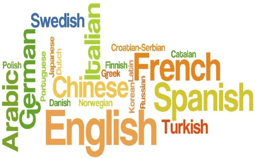 Dil Nedir?